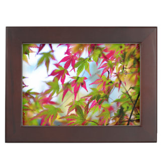 autumn tree leaf nature abstract detail background keepsake boxes