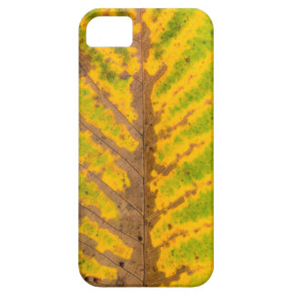 autumn tree leaf texture pattern background nature iPhone 5 case