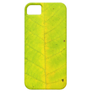 autumn tree leaf texture pattern background nature iPhone 5 cases