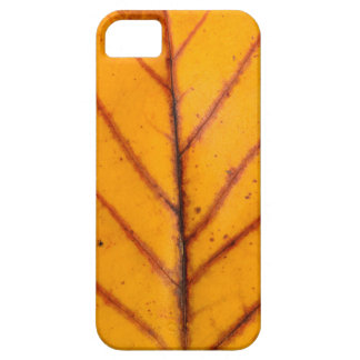 autumn tree leaf texture pattern background nature iPhone 5 cover