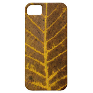 autumn tree leaf texture pattern background nature iPhone 5 covers