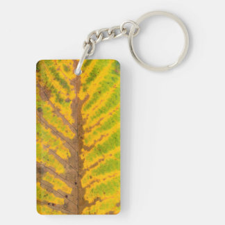autumn tree leaf texture pattern background nature key ring