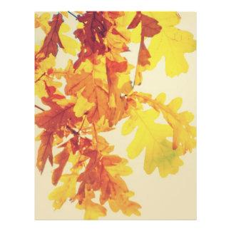 Autumn tree leaves flyer