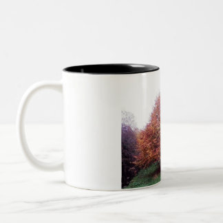 Autumn Tree on mug