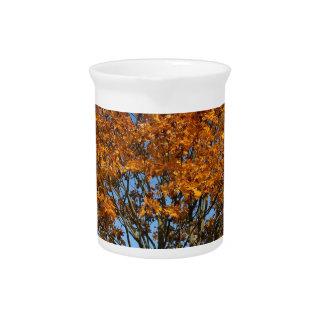 Autumn tree pitcher