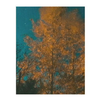 Autumn tree reflection photograph wood wall art