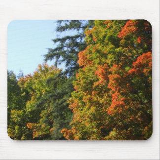 Autumn Tree Scene Mouse Pad