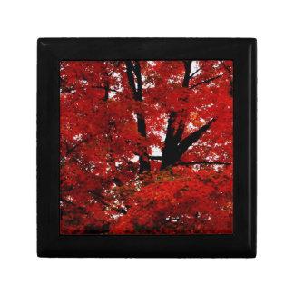 Autumn Tree Small Square Gift Box