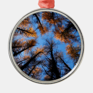Autumn trees at  sunset christmas ornament