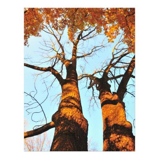 Autumn trees flyer design