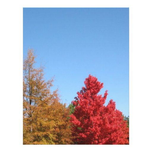 Autumn Trees Flyers
