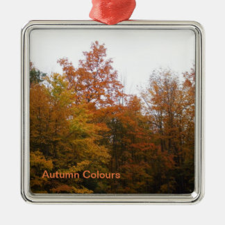 Autumn Trees for Your Family Christmas Tree Christmas Ornament