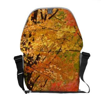 Autumn Trees Forrest Courier Bag