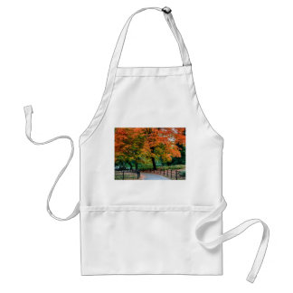 Autumn Trees in Central Park Photo Apron