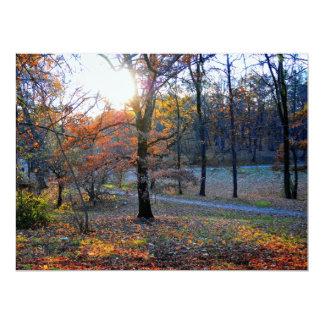 Autumn trees invites