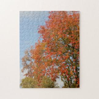 Autumn Trees Jigsaw Puzzle