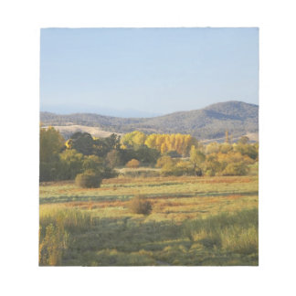 Autumn Trees, Khancoban, Snowy Mountains, New Notepad