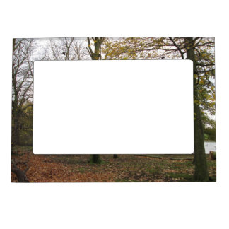 Autumn trees magnetic photo frame