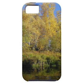 AUTUMN TREES MIRRORED IN WATER iPhone 5 CASE
