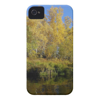 AUTUMN TREES MIRRORED IN WATER iPhone 4 Case-Mate CASES