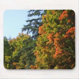 Autumn Trees Mouse Mat