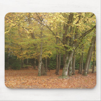 Autumn trees mouse pad