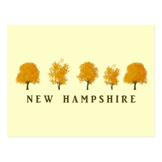 Autumn Trees - NH Postcard