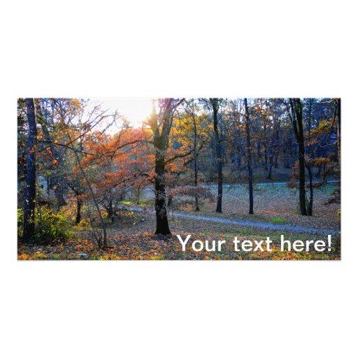 Autumn trees photo card template