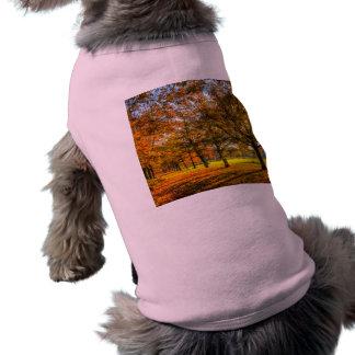 Autumn Trees Shirt