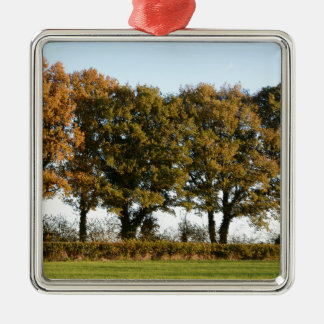 Autumn trees Silver-Colored square decoration
