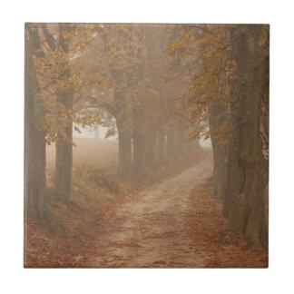 Autumn Trees Tile