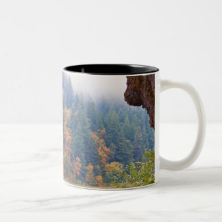 Autumn Umpqua River, Oregon Two-Tone Coffee Mug