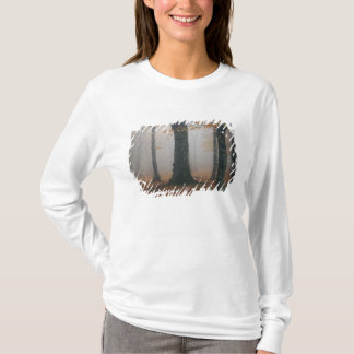 Autumn view of foggy forest, Grandfather 2 T-Shirt