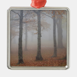 Autumn view of foggy forest, Grandfather Silver-Colored Square Decoration