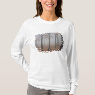 Autumn view of foggy forest, Grandfather T-Shirt