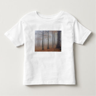 Autumn view of foggy forest, Grandfather Toddler T-Shirt