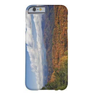 Autumn view of Southern Appalachian Mountains Barely There iPhone 6 Case