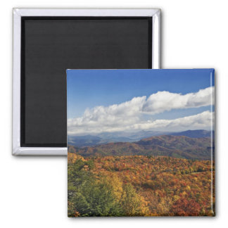 Autumn view of Southern Appalachian Mountains Square Magnet