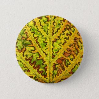 autumn vine leaf texture pattern plant nature 6 cm round badge