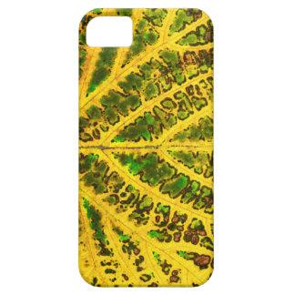 autumn vine leaf texture pattern plant nature case for the iPhone 5
