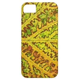 autumn vine leaf texture pattern plant nature orga iPhone 5 case
