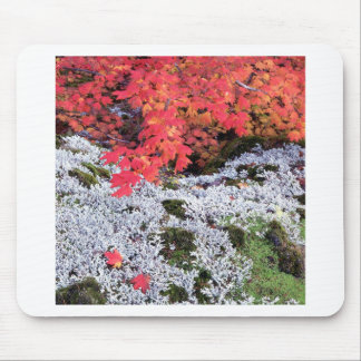 Autumn Vine Maple And Lichens Mouse Pads