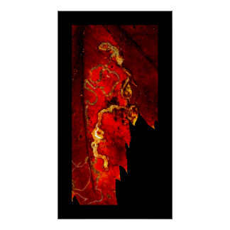 Autumn Virginia Creeper Poster