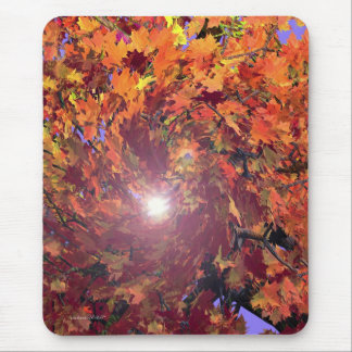 Autumn Whirl Mouse Mat
