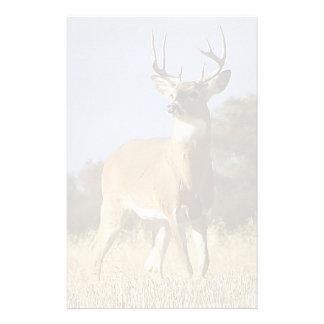 Autumn Whitetail Buck Stationery