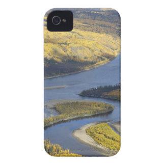 AUTUMN WILDLIFE VIEWING iPhone 4 CASES