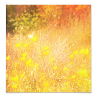 Autumn wing photo print