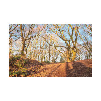 Autumn woodland early in the morning canvas print