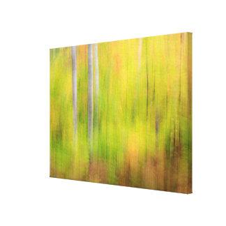 Autumn Woodland | Michigan, Upper Peninsula Canvas Print