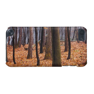 Autumn Woods Forest Photograph iPod Touch 5G Case